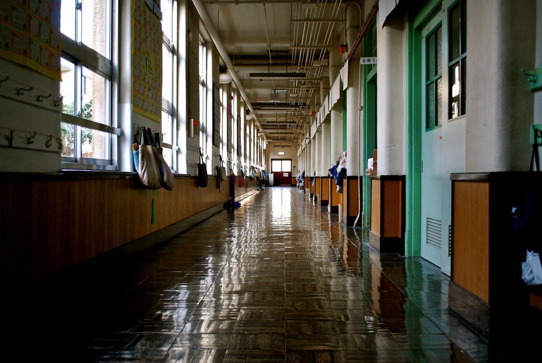 Quais os motivos da evasão escolar no Brasil